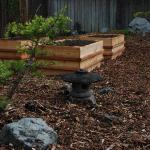 Japanese style raised cedar garden beds nestled in windswept dwarf pines and conifers.  This project combined Japanese style, edible plants, large boulders with a motif of the back yard representing the Puget Sound.  Th rock in the back ground represents Mt. Rainier.